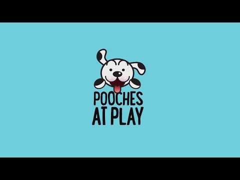 Pooches at Play TV | Blood Infections and UTI's