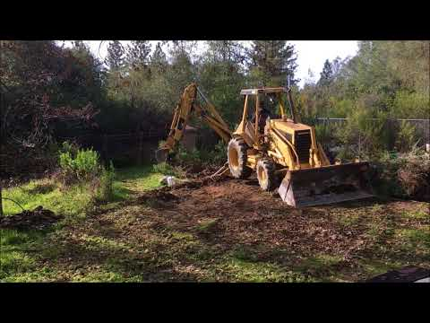 Medicinal Herb Garden ( clearing a spot for it)(clearing land for garden)(herb garden diy project)