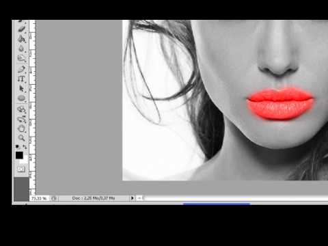 Photoshop CS4/CS5 How to apply black and white in a picture and color other places in the same time