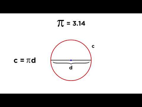 Circles: Radius, Diameter, Chords, Circumference, and Sectors