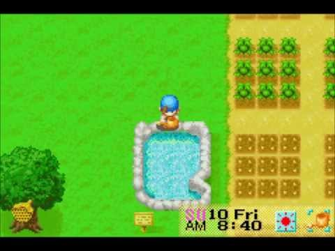 Let's Play Harvest Moon: Friends of Mineral Town 85: Slow Corn
