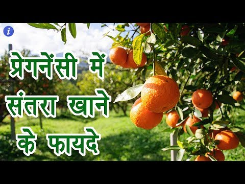 Benefits of Orange During Pregnancy in Hindi | By Ishan