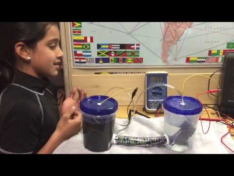 Microbial Fuel Cell Science Fair Project by Aurora Garza