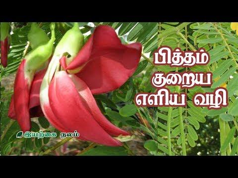 பித்தம் குறைய எளிய வழி | Agathi Keerai Benefits in Tamil