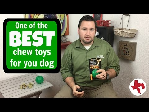 BEST Dog Toy | Starmark Treat Dispensing Chewball | Dog Trainer's Product Review