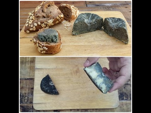 blue cheese homemade without rennet
