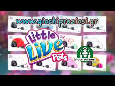 Little Live Pets -  Πασχαλίτσες Χρωμοσελίδες