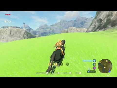 Taming a Black Horse - Zelda Breath of the Wild