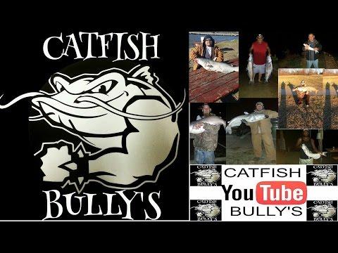 CATFISH BULLY'S