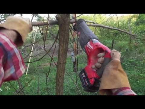 Best tool for cutting brush: Milwaukee Fuel Sawzall