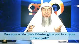Does your wudu break if during ghusl you touch your private parts? - Sheikh Assim Al Hakeem