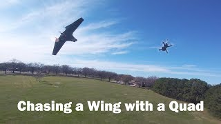 Quad vs. Wing: Chasing Shelby Voll at Full Throttle