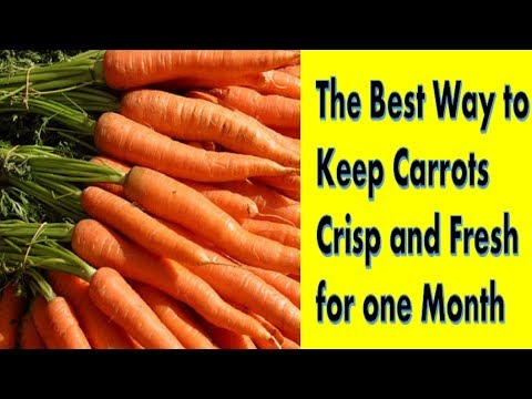 How to Store Carrots Fresh for a Month || How To Preserve Carrots for a Month