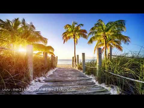 Ocean Drive Miami Hot Party Songs | Fitness Workout Music to Get Ready for Summer 🔥