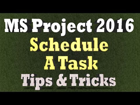 Ms Project 2016 Tips and Tricks - How to Schedule a Task to Override Resource Calendars