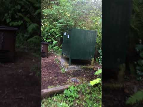 Video of Mill Creek Campground, CA from Andrew D.