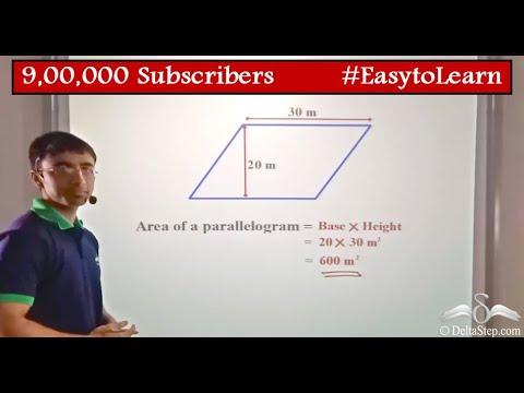 Parallelogram: Perimeter & Area