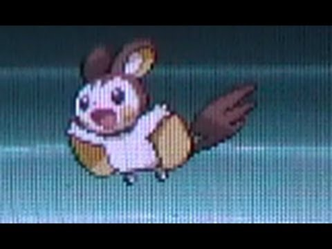[MM Week] Shiny Emolga!! (LIVE!!) After 424 Eggs! Pokemon Black 2