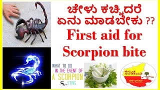 Download first aid for scorpion bite..treatment of scorpion bite.. Video