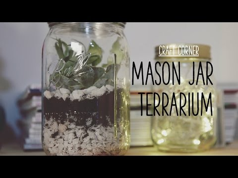 Craft Corner: How to make a mason jar terrarium