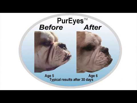 PurEyes Natural Tear Stain Remover for Pets