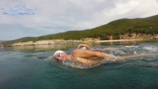 3 swimming tips to swim straight in open water and protect lower back & neck