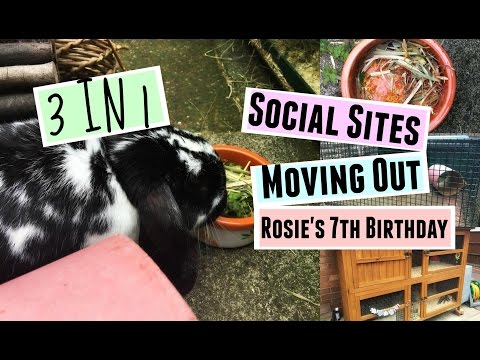 3 IN 1: Social Sites, Moving Out & Rosie's 7th Birthday | RosieBunneh