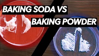 The Difference Between Baking Soda and Baking Powder - Explained