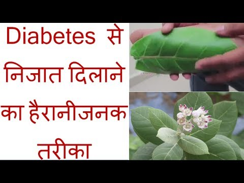 Amazing and Simple Way to Get Rid of Diabetes in Hindi || Health Tips || Make Life Easy