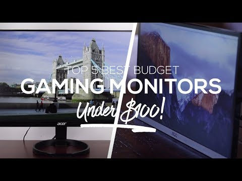 Top 5 Best Budget Gaming Monitors Under $100!