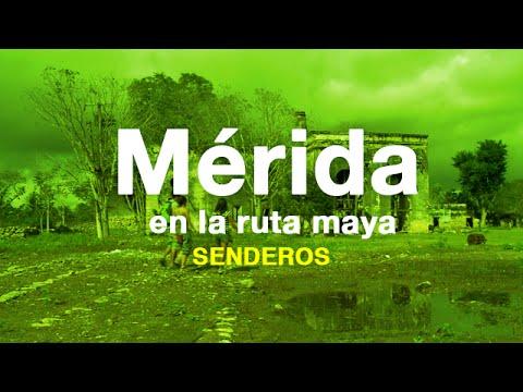 Mérida y la Isla Arena en la ruta maya