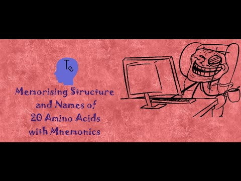 Memorising Structure and Names of 20 Amino Acids with Mnemonics