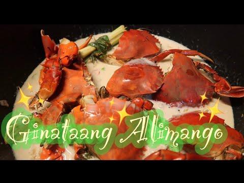 SPICY GINATAANG ALIMANGO | filipino recipe | meg's gourmet