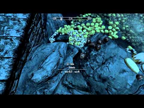 Skyrim : Awesome Console Commands