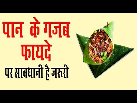 Xxx Mp4 पान खाने के मस्त मस्त फायदे Health Benefits Of Betel Paan Khane Ke Fayda In Hindi 3gp Sex