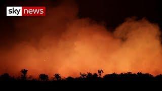 Outcry grows over Amazon fires