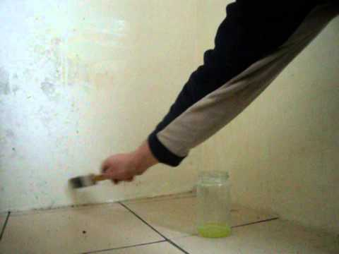 How to remove mould on walls