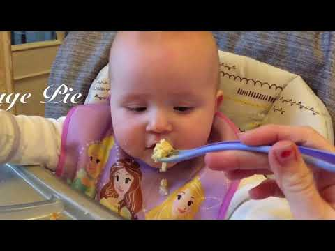 BABY / TODDLER MEAL IDEAS - HEALTHY RECIPES KIDS WILL LOVE