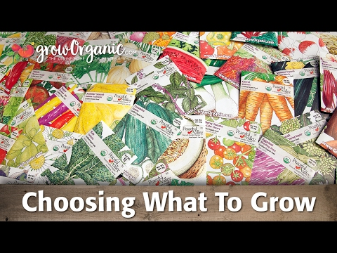 Organic Seeds -- Choosing What to Grow