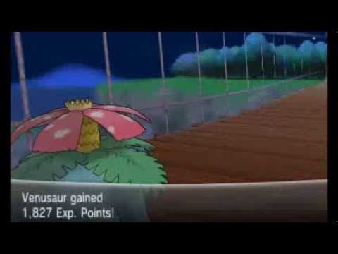 Pokemon X/Y - Walkthrough Part 32 - Route 19