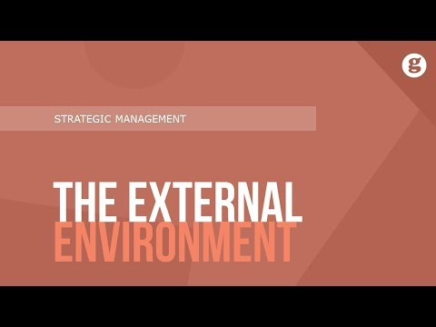 The External Enviornment
