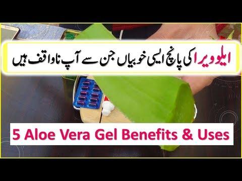 5 Aloe Vera Gel Uses And Benefits | Skin Care | Hair growth | Aloe Vera Ke Fayde In Urdu \ Hindi