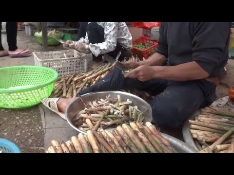 cutting and peeling Bamboo shoots
