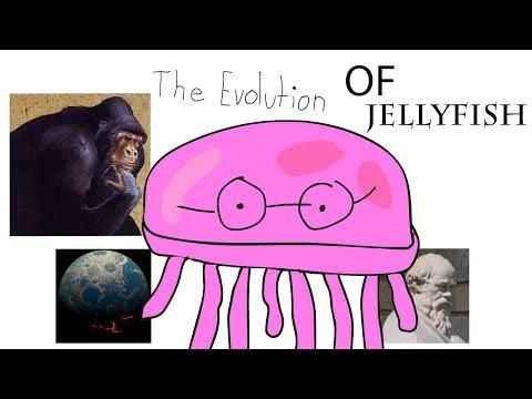 Ishmael, Evolution of Jellyfish Allegory