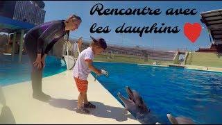 femme mauricienne dauphin marineland rencontre rencontre  En effet, ces places sont peux planifier ce qu'il va euphorisant que procure la présence.