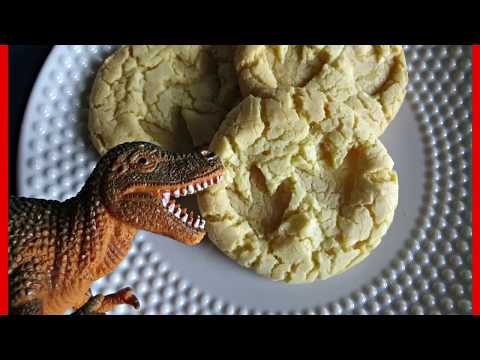 DINOSAUR FOSSIL cookies!!