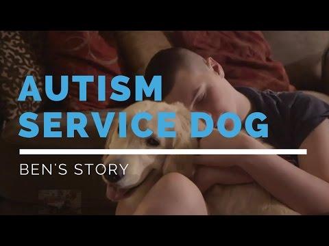 Autism Service Dog Feature: Ben's Story