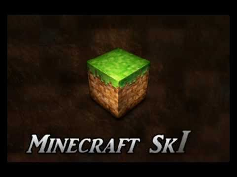 How to Change your Skin in Minecraft SP