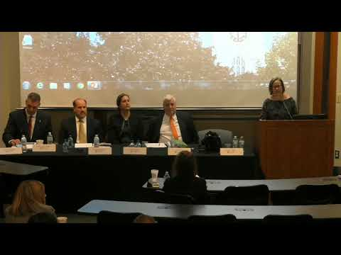 Creative Solutions to the Opioid Crisis Panel 2