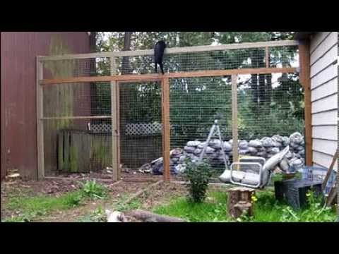 How to keep your cats from climbing a fence - They can't climb this cat proof fence.